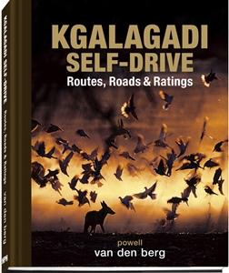 Kgalagadi Self-drive – Routes, Roads and Ratings
